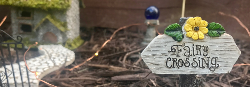 The Beginner's Guide to Fairy Gardens