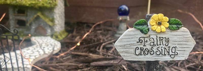 The Beginner's Guide to Fairy Gardens