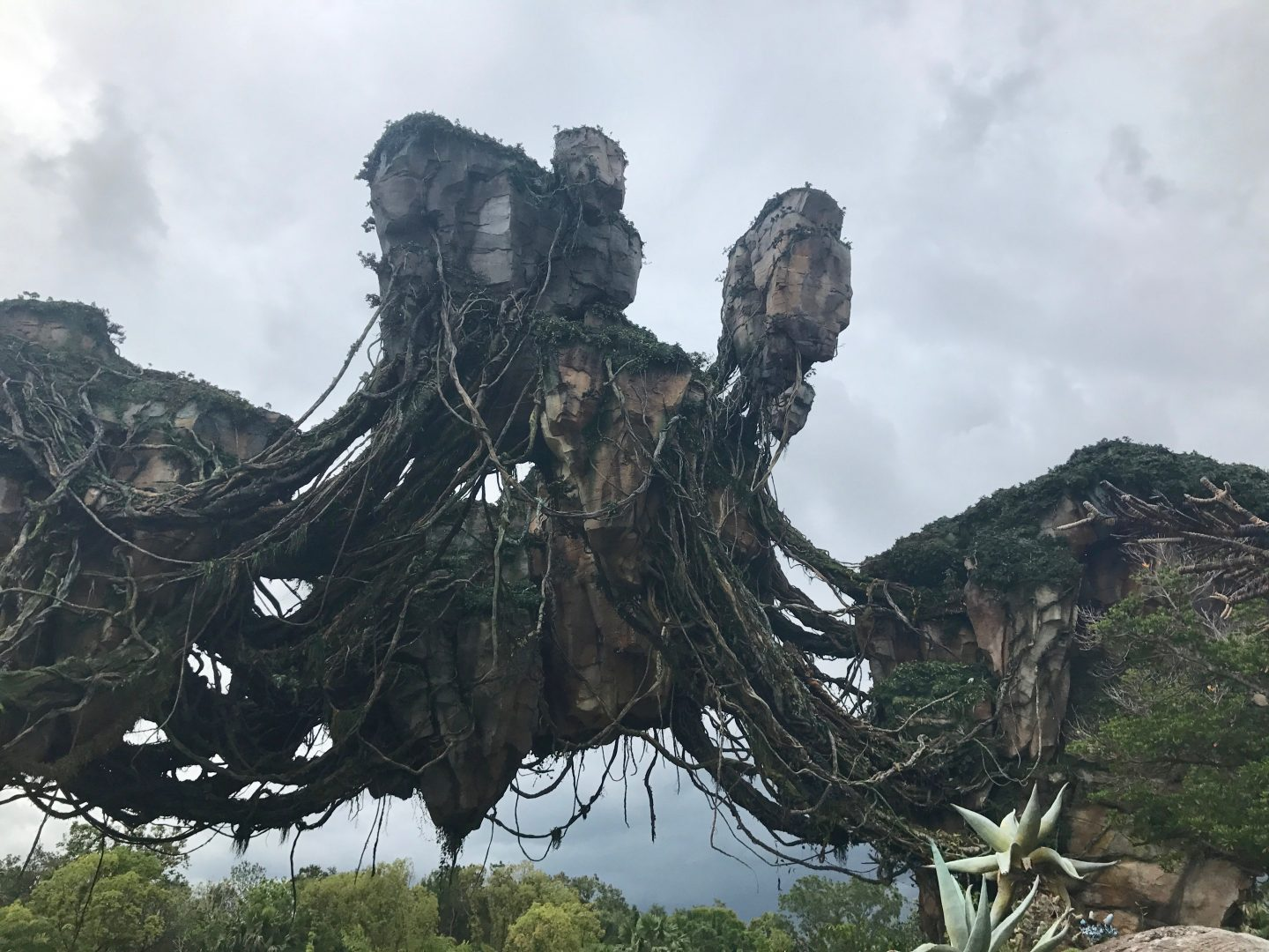 pandora-animal-kingdom