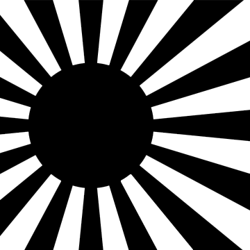 Street Fighter Flag Background