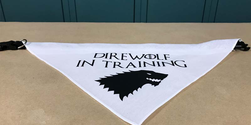 DIY Dog Bandana: Direwolf in Training