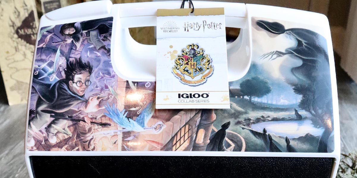 Take Magic Wherever You Go with an Illustrated Harry Potter IGLOO Cooler