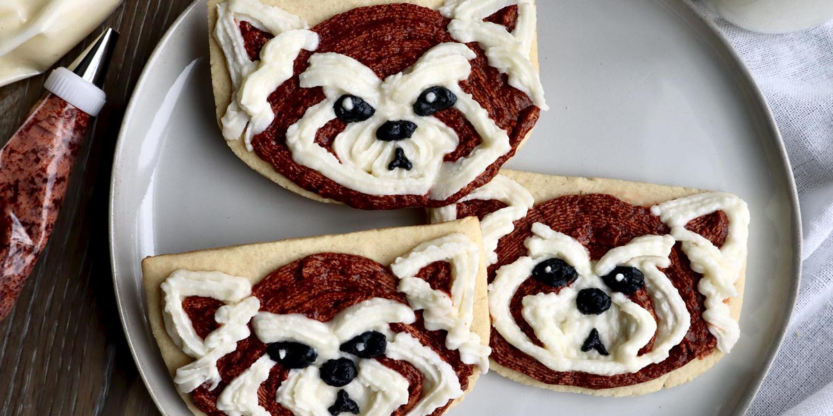 Pabu Cookies Inspired by The Legend of Korra